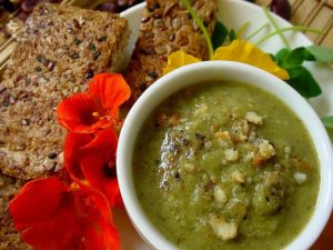 Thornybush Lodge Recipe- Brie and Broccoli Soup